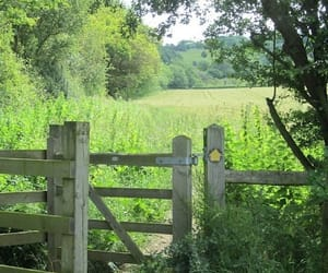 country, countryside, and fence image