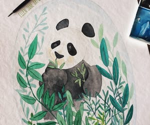 animal, leafs, and panda bear image