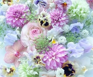 beauty, spring, and flowers image