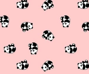 design, panda, and pattern image