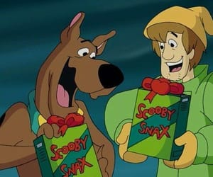 scoobydoo and shaggy image
