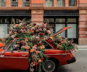 car, red, and flowers image