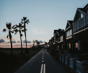 photography, beach, and tumblr image