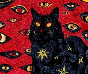 red, black cat, and cat image