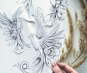birds, drawing, and flower image