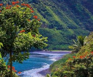 hawaii, paradise, and the beach image