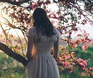 beautiful, nature, and dress image