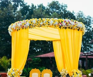 color, marquee, and yellow image