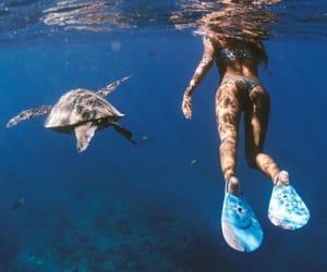 girl, sea, and tropical image