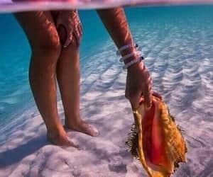 girl, summer, and shell image