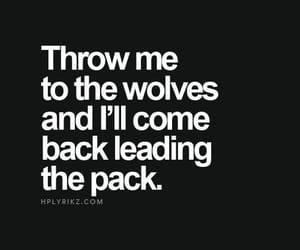 wolf, quotes, and leader image