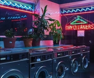 neon, plants, and retro image