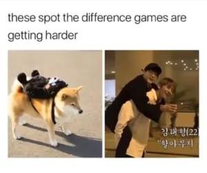 bts, daegu, and yoongi image