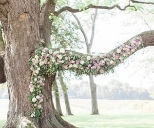 romantic and spring image