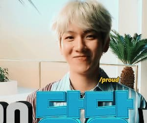 bacon, kpop, and exo image