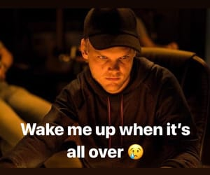 rip and avicii image