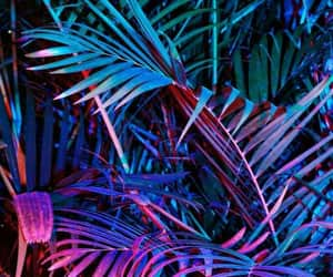 neon, plants, and wallpaper image