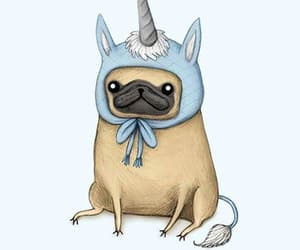 unicorn, pug, and wallpaper image
