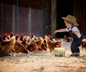 kids, baby, and Chicken image