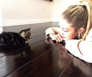 gigi hadid, cat, and model image