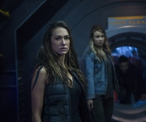 echo, harper, and the 100 image