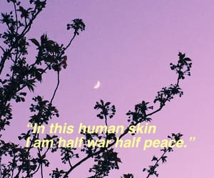 quotes, violets, and words image