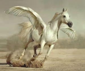 Mythological Creatures on We Heart It