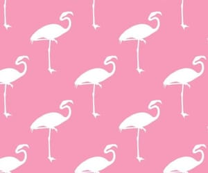 wallpaper, pink, and pattern image