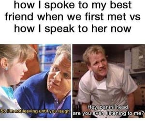 friendship, gordon ramsay, and funny image