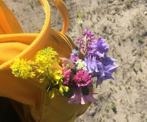 flowers, tumblr, and yellow image