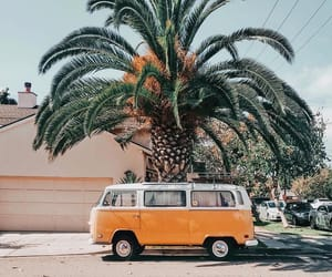 summer, palm trees, and car image