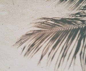 aesthetic, alternative, and fresh image