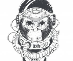 space, astronaut, and monkey image
