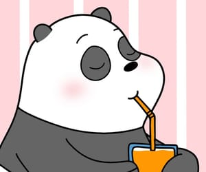 animal, bear, and cartoon image