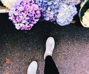 blue, flowers, and norway image