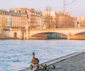 winter day in paris image
