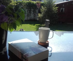 backyard, book, and flower image