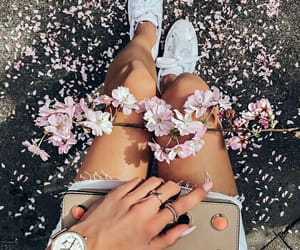 april, blossom, and girly image