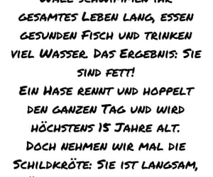 deutsch, lol, and funny image