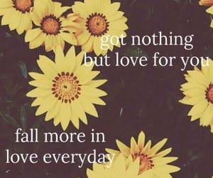 fall, in love, and calum hood image