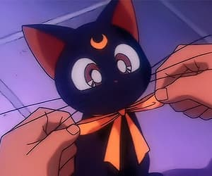 cat, gif, and sailor moon image
