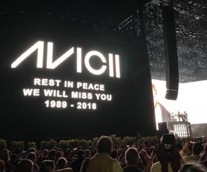 festival, avicii, and music image