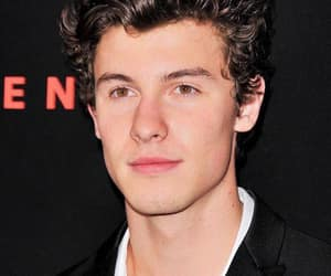 shawn, singer, and shawn mendes image