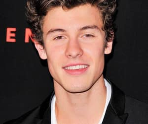shawn, singer, and mendes image
