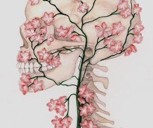 flowers, skull, and art image