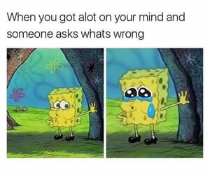 memes and spongebob image