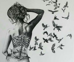 art, bird, and drawing image