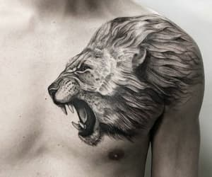 tattoo, animal, and lion image
