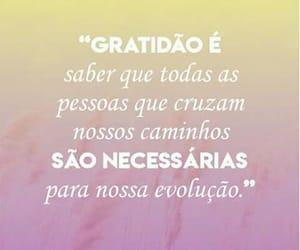 caminho, life, and gratidão image