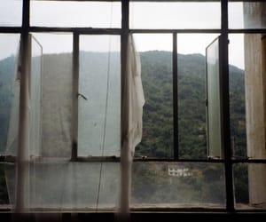 theme, grunge, and window image